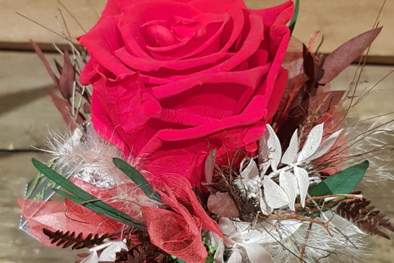 Arrangement de rose rouge lyophilisée